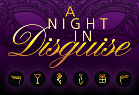 Image result for a night in disguise